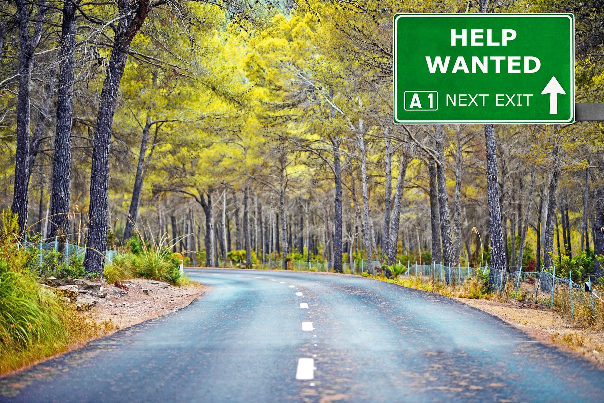 Hiring and Retaining Evergreen Talent
